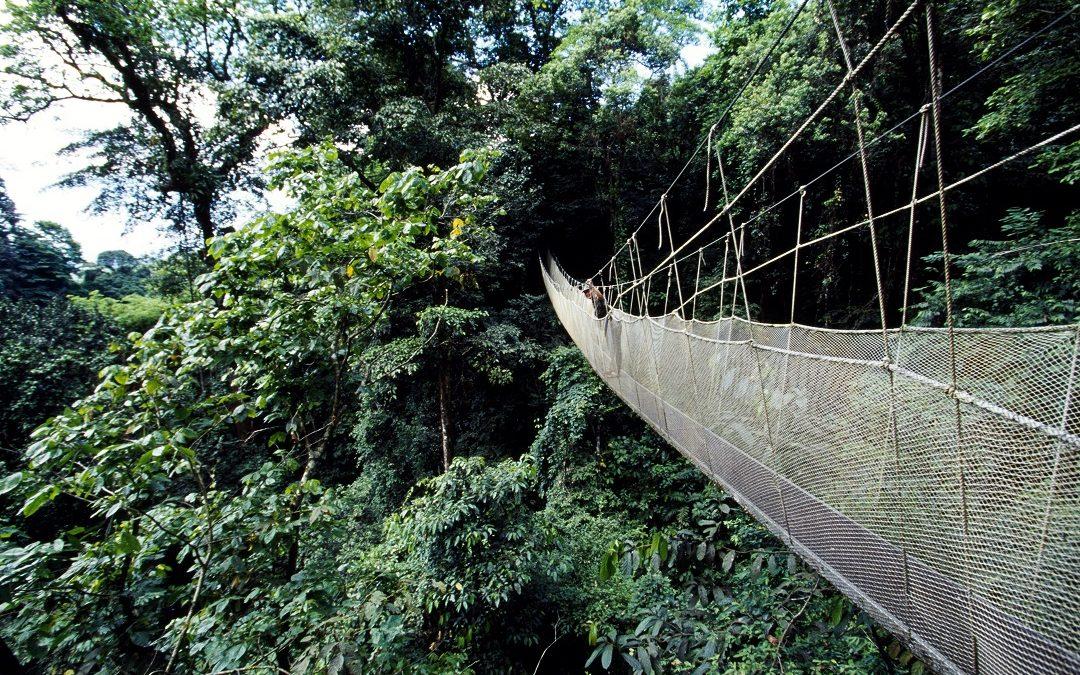 El ecoturismo, una herramienta de desarrollo sostenible