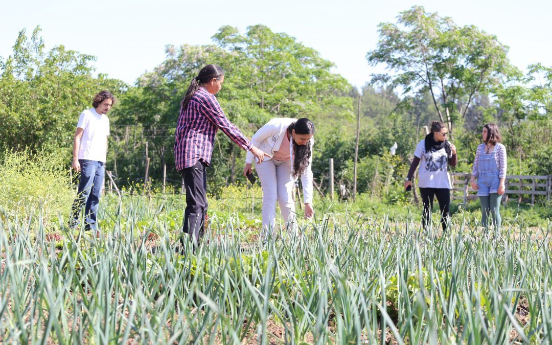 Tendencia: los jóvenes se han vuelto los grandes defensores del medio ambiente