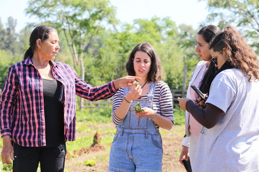 Mulheres participantes de um laboratório de inovação na Argentina, 2018