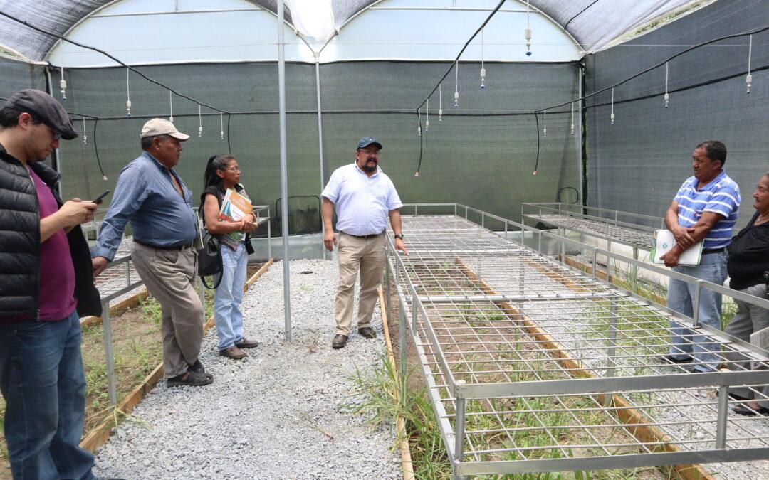 Cómo la cooperación mejora los sistemas de riego y las capacidades de gestión del agua en Ecuador
