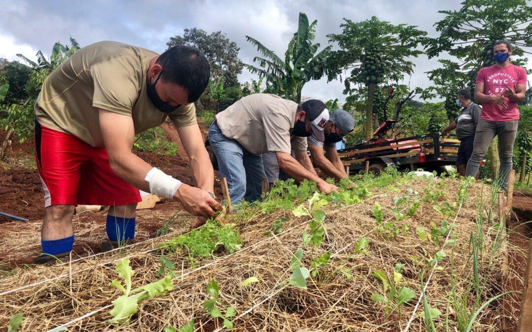 """Costa Rica Regenerativa: """"para que otro mundo sea posible, empecemos a construirlo"""""""