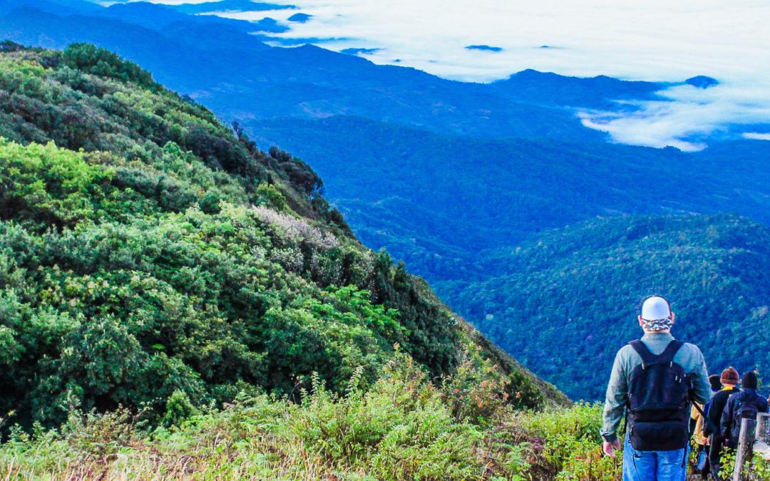 Agenda Medioambiental Iberoamericana: para una recuperación en sintonía con la naturaleza
