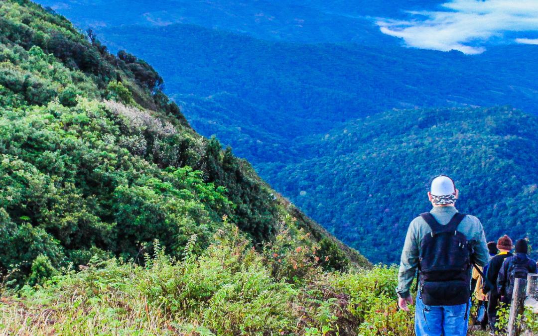 Agenda Meio ambiental Ibero-americana, para uma recuperação que 'sintonize' com a natureza