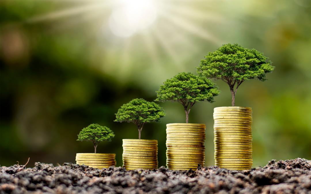 Emprendimientos ambientales, nuevas empresas para reinventar la economía