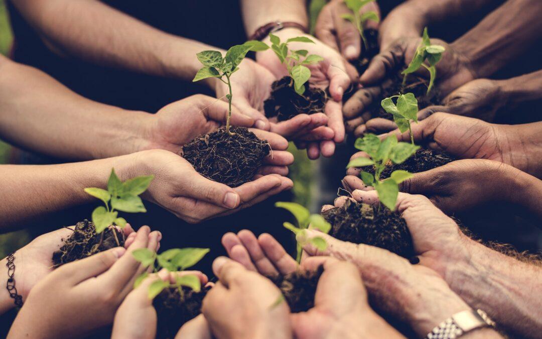 Una apuesta por un futuro más verde durante la Semana Medioambiental Iberoamericana